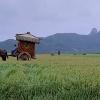 秀丽江山预告 论一个农夫如何开创一个王朝