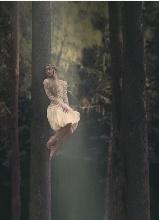 梦幻丛林中的美女