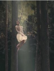 <b>梦幻丛林中的美女</b>